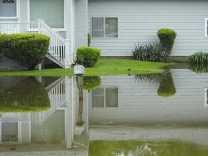 flooded yard does not make for a happy home